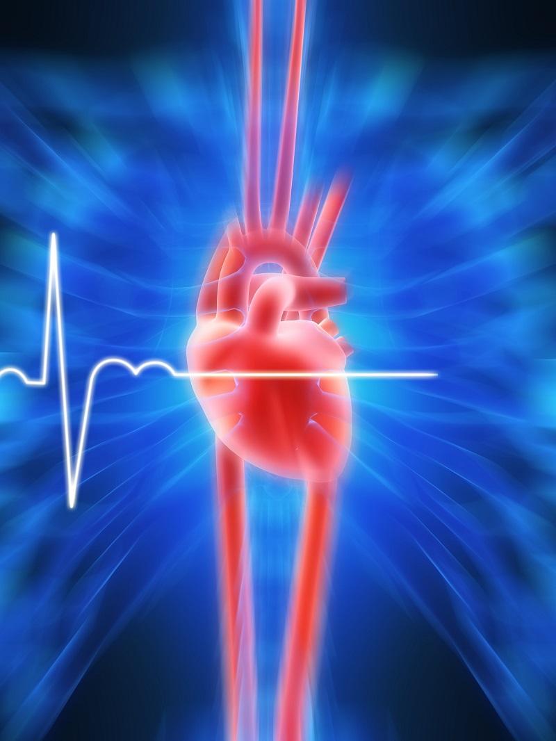 בדיקה וירטואלית של הלב